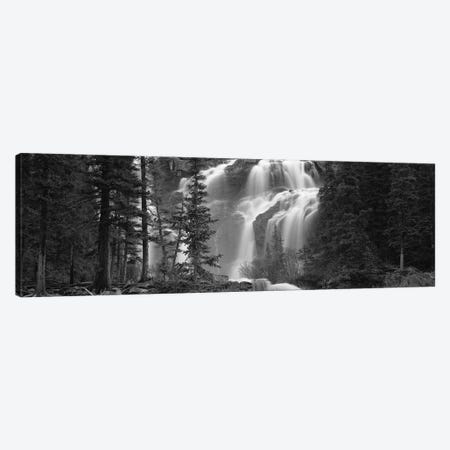 Waterfall in a forest, Banff, Alberta, Canada Canvas Print #PIM11704} by Panoramic Images Art Print