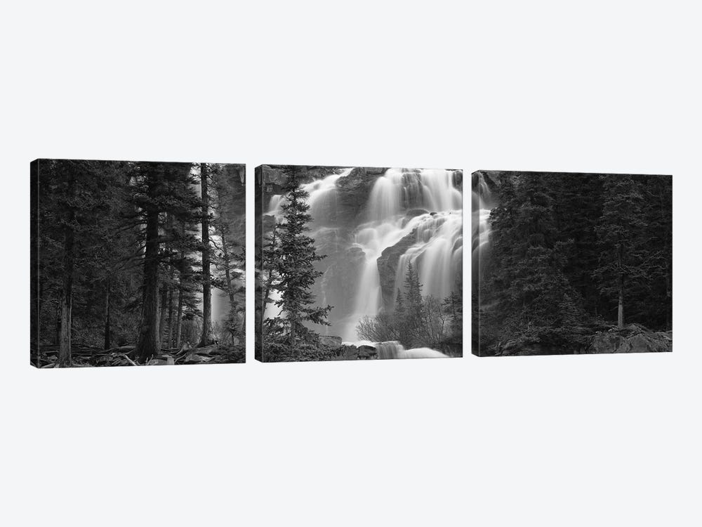 Waterfall in a forest, Banff, Alberta, Canada by Panoramic Images 3-piece Canvas Print