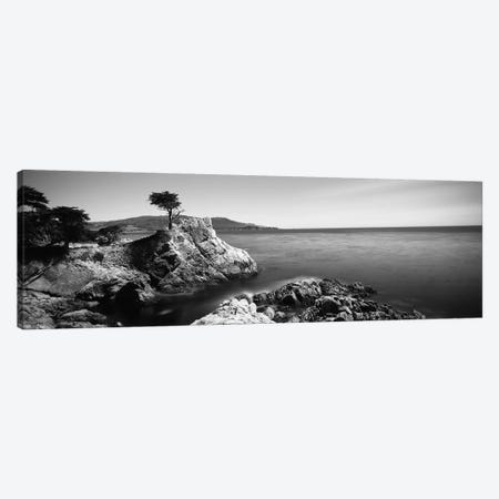 Cypress tree at the coast, The Lone Cypress, 17 mile Drive, Carmel, California, USA Canvas Print #PIM11725} by Panoramic Images Canvas Art Print
