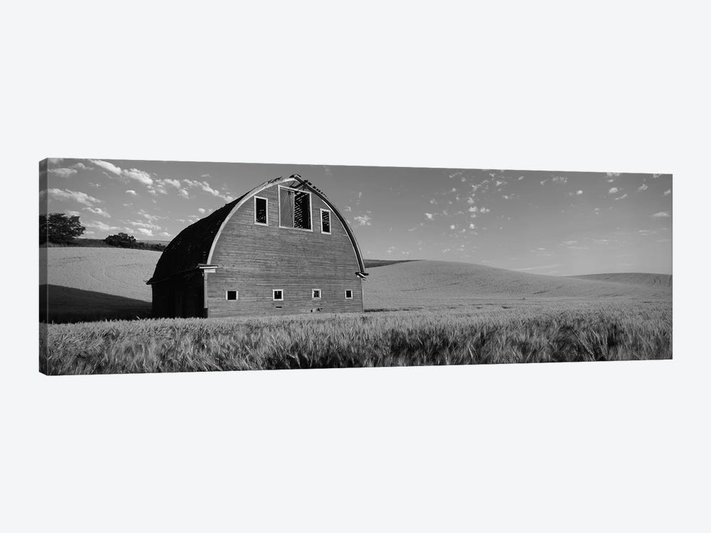 Old barn in a wheat field, Palouse, Whitman County, Washington State, USA by Panoramic Images 1-piece Canvas Print