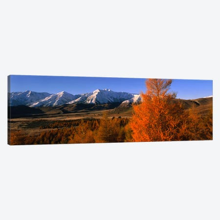 Castle Hill Basin Torlesse Mountains New Zealand Canvas Print #PIM1182} by Panoramic Images Canvas Art