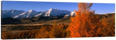 Castle Hill Basin Torlesse Mountains New Zealand Canvas Print #PIM1182