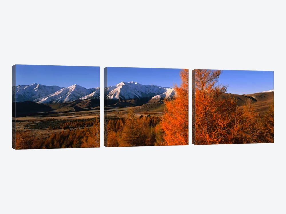 Castle Hill Basin Torlesse Mountains New Zealand by Panoramic Images 3-piece Canvas Art Print