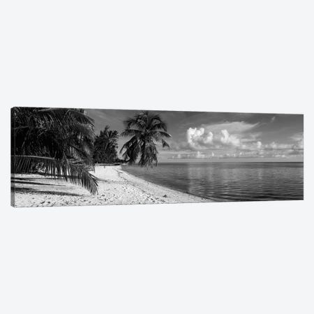 Palm trees on the beach, Matira Beach, Bora Bora, French Polynesia Canvas Print #PIM11837} by Panoramic Images Canvas Print