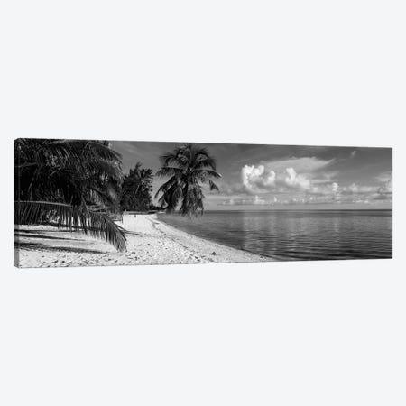 Palm trees on the beach, Matira Beach, Bora Bora, French Polynesia Canvas Print #PIM11837} by Panoramic Images Canvas Print