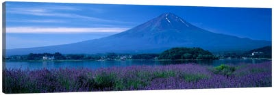 Mount Fuji Japan Canvas Print #PIM1183
