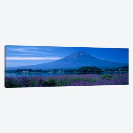 Mount Fuji Japan Canvas Print #PIM1183} by Panoramic Images Canvas Wall Art
