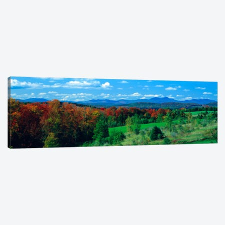 Autumn Trees VT Canvas Print #PIM1184} by Panoramic Images Canvas Art Print