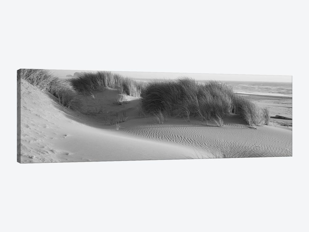 Grass on the beach, Pacific Ocean, Bandon State Natural Area, Bandon, Oregon, USA by Panoramic Images 1-piece Canvas Art