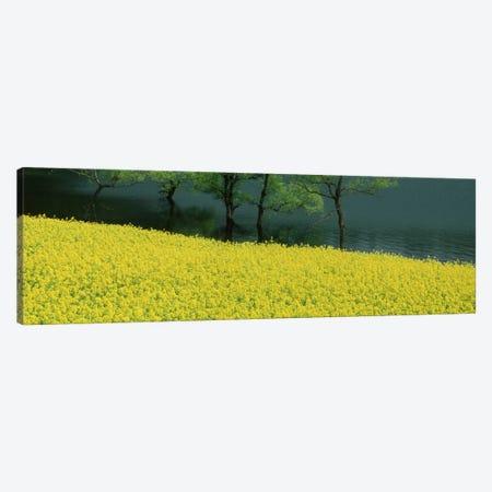 Hakuryu-Ko Nagano Japan Canvas Print #PIM1188} by Panoramic Images Canvas Wall Art