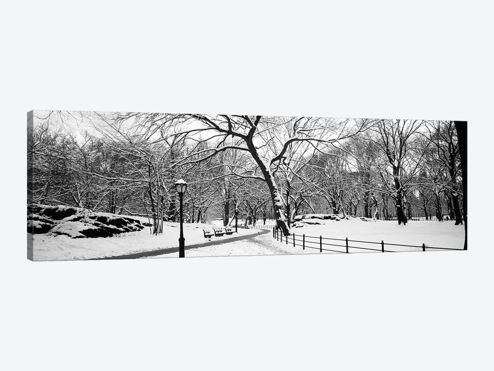 Bare trees during winter in a park, Central Park, Manhattan, New York City, New York State, USA by Panoramic Images 1-piece Canvas Art