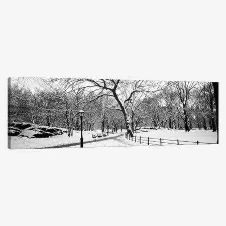 Bare trees during winter in a park, Central Park, Manhattan, New York City, New York State, USA Canvas Print #PIM11892} by Panoramic Images Canvas Art