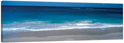 Waters Edge Barbados Caribbean Canvas Art Print