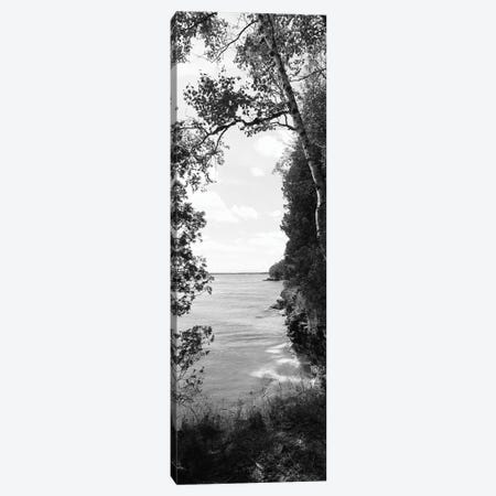 Trees at the lakeside, Cave Point County Park, Lake Michigan, Door County, Wisconsin, USA Canvas Print #PIM11903} by Panoramic Images Canvas Artwork