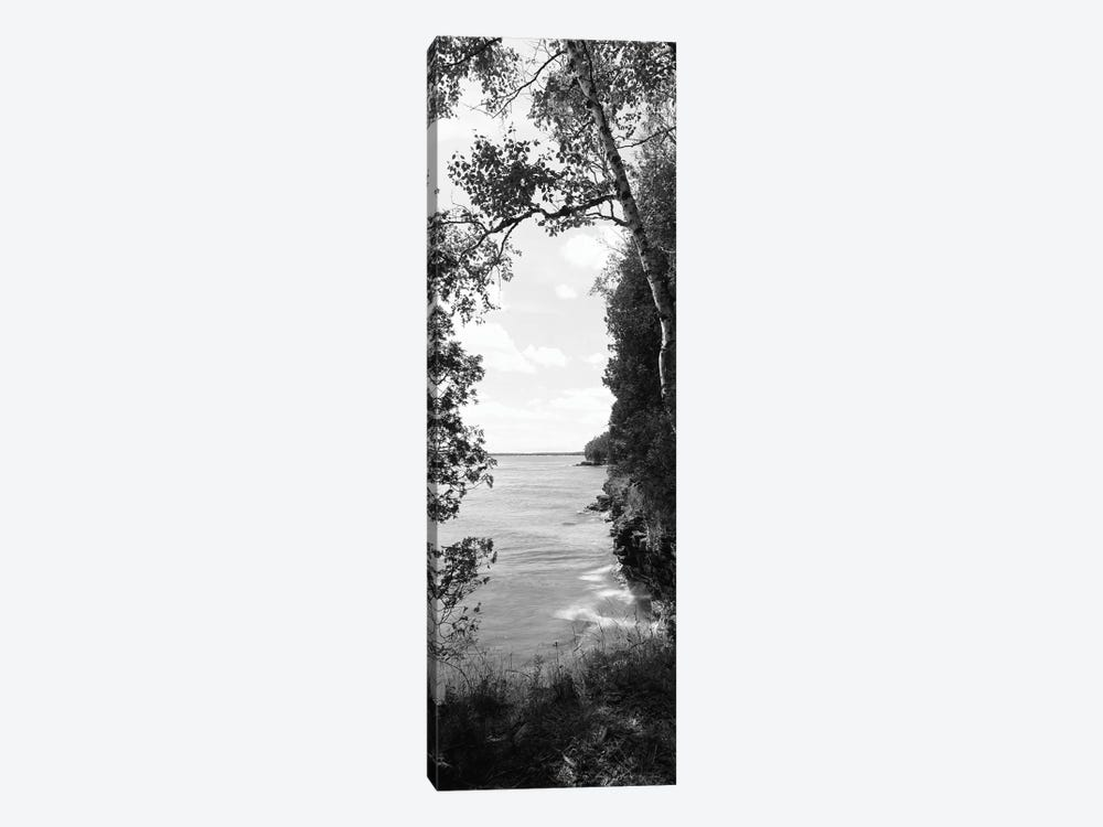 Trees at the lakeside, Cave Point County Park, Lake Michigan, Door County, Wisconsin, USA by Panoramic Images 1-piece Art Print