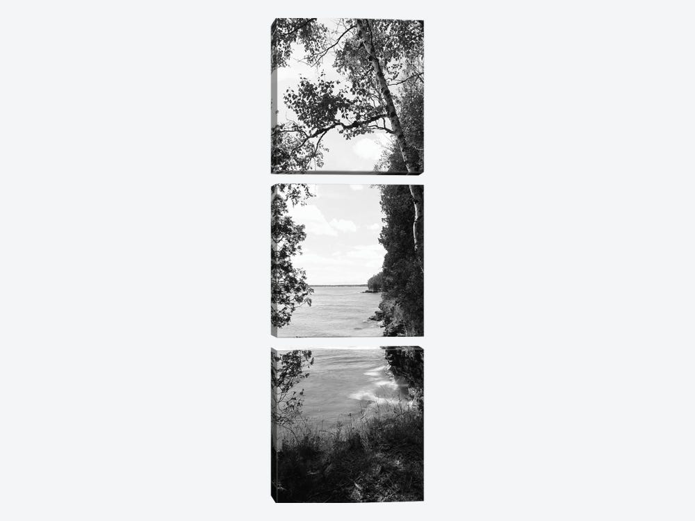 Trees at the lakeside, Cave Point County Park, Lake Michigan, Door County, Wisconsin, USA by Panoramic Images 3-piece Canvas Print