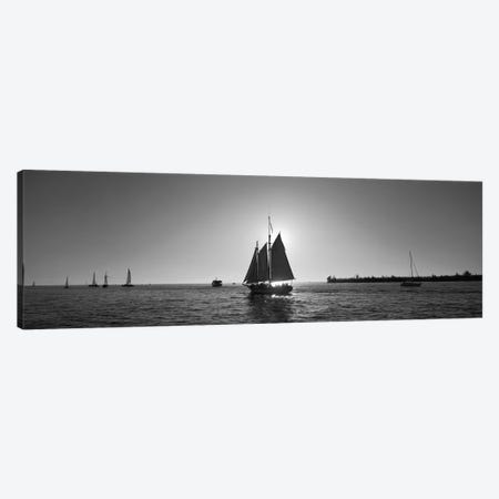 Sailboat, Key West, Florida, USA Canvas Print #PIM11904} by Panoramic Images Canvas Art Print