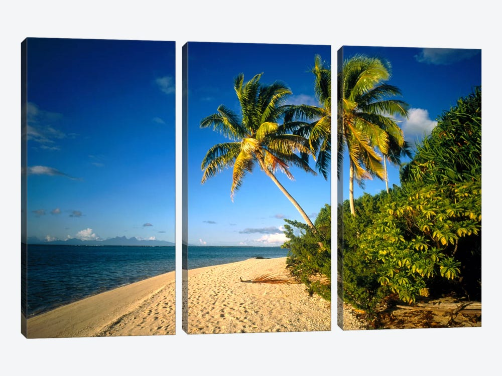 Tahiti French Polynesia by Panoramic Images 3-piece Canvas Art Print