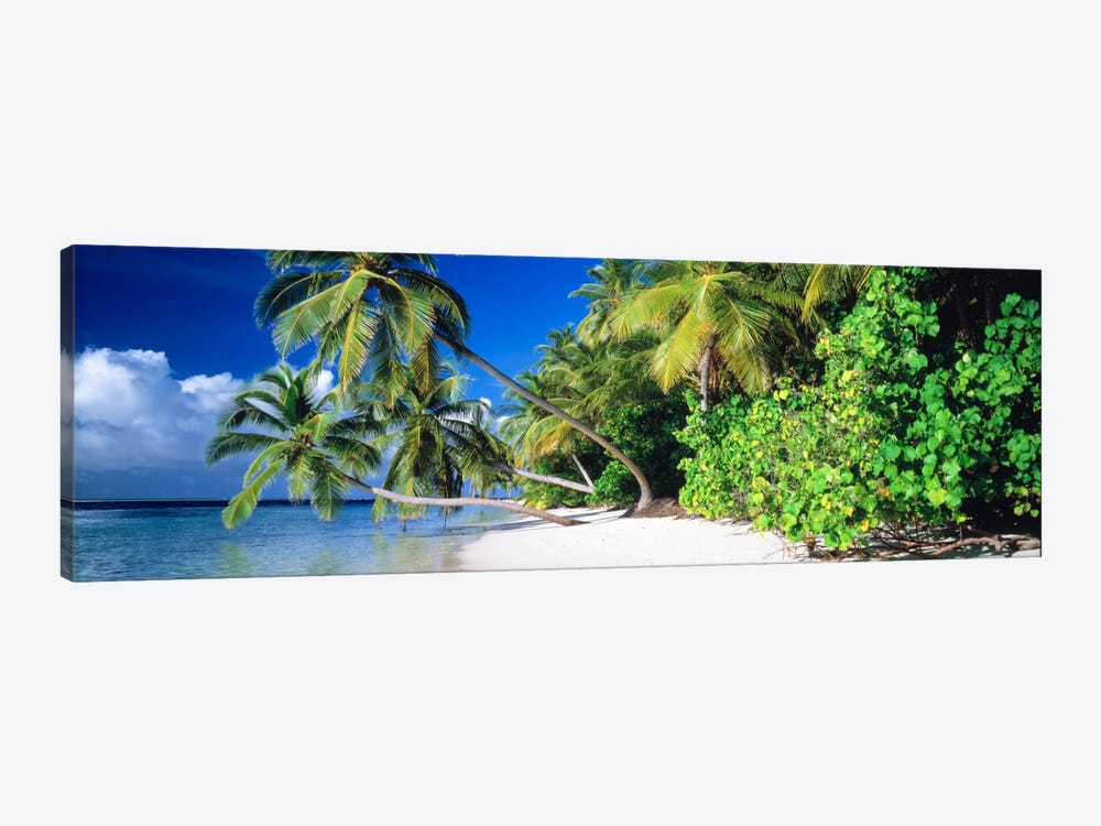 Palm Beach The Maldives by Panoramic Images 1-piece Canvas Print