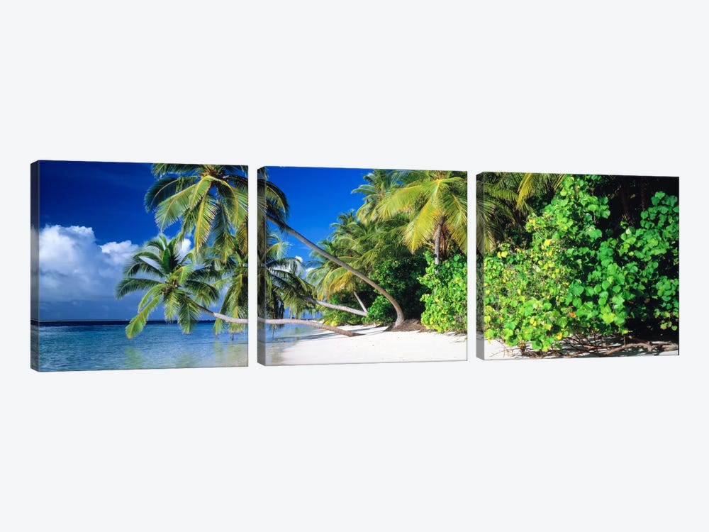 Palm Beach The Maldives by Panoramic Images 3-piece Art Print