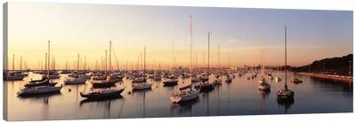 Sunset & harbor Chicago IL USA Canvas Art Print