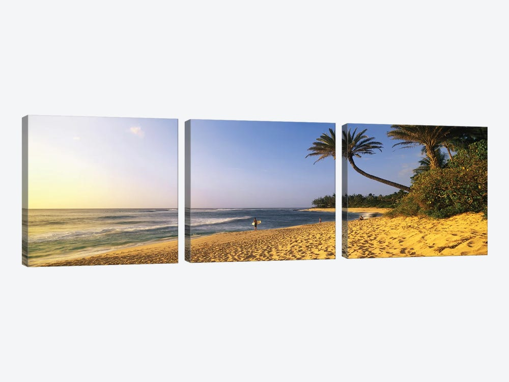 Surfer on Beach HI by Panoramic Images 3-piece Canvas Art Print