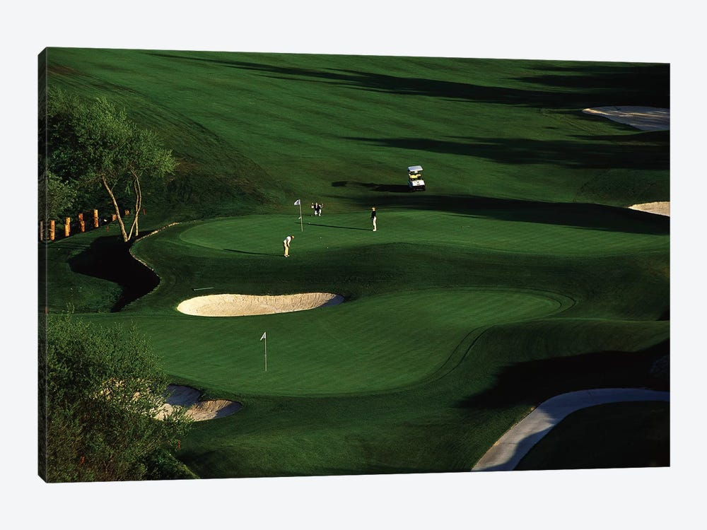 Golfer Putting on the Green by Panoramic Images 1-piece Art Print