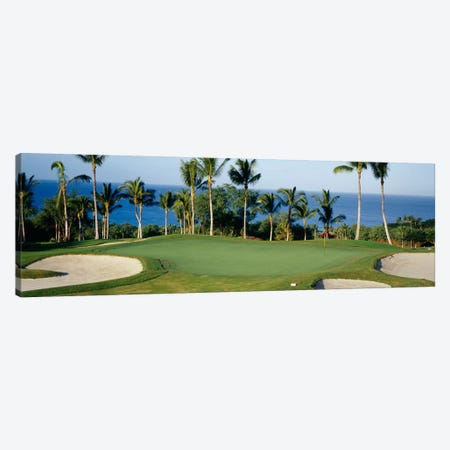 Oceanside Green, Maui, Hawaii, USA Canvas Print #PIM12176} by Panoramic Images Canvas Art