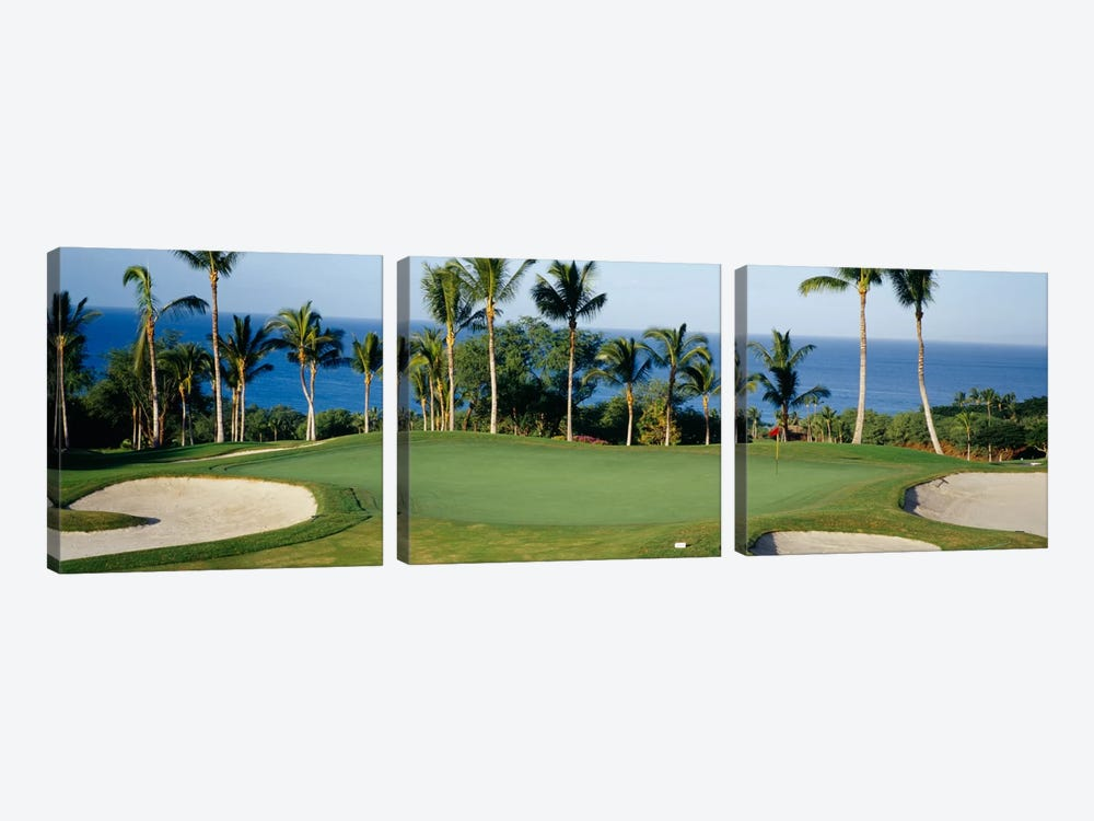 Oceanside Green, Maui, Hawaii, USA by Panoramic Images 3-piece Canvas Artwork