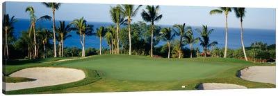 Oceanside Green, Maui, Hawaii, USA Canvas Art Print
