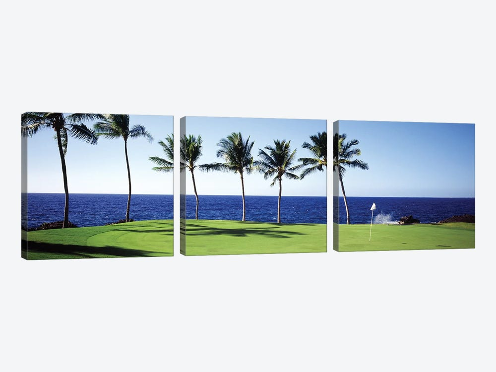 Golf Course Big Island HI by Panoramic Images 3-piece Art Print