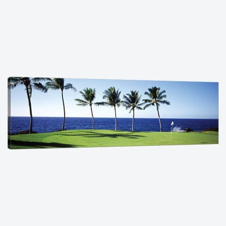 Golf Course Big Island HI 3-Piece Canvas #PIM12177} by Panoramic Images Canvas Art