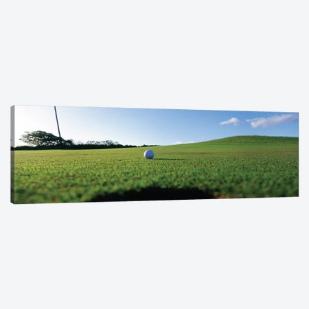 Golf Ball Entering The Hole, Kanapali, Hawaii, USA Canvas Print #PIM12239} by Panoramic Images Canvas Wall Art
