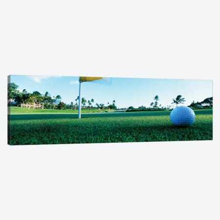 Close Up Golf Ball And Hole, Hawaii, USA Canvas Print #PIM12241} by Panoramic Images Canvas Print