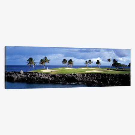 Tropical Palm Tree Laden Green, Hawaii, USA Canvas Print #PIM12244} by Panoramic Images Canvas Artwork