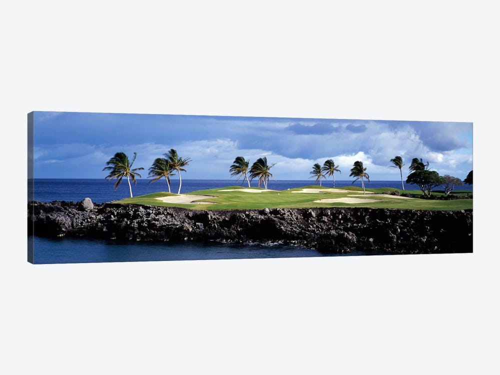 Tropical Palm Tree Laden Green, Hawaii, USA by Panoramic Images 1-piece Canvas Art Print