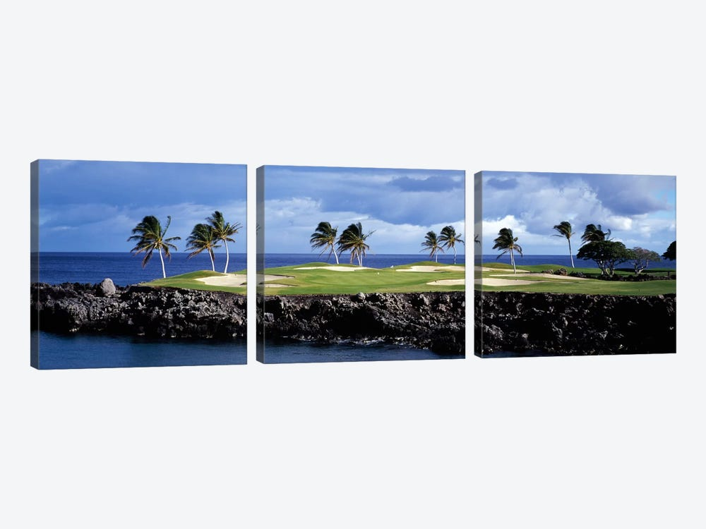 Tropical Palm Tree Laden Green, Hawaii, USA by Panoramic Images 3-piece Art Print