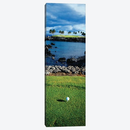 High angle view of a golf ball on a tee in a golf Course, Hawaii, USA Canvas Print #PIM12245} by Panoramic Images Canvas Wall Art