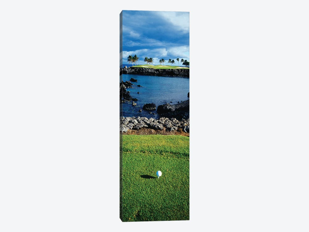 High angle view of a golf ball on a tee in a golf Course, Hawaii, USA by Panoramic Images 1-piece Canvas Wall Art