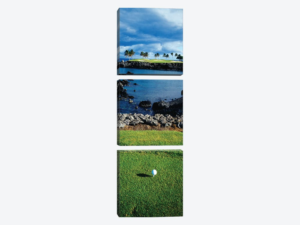 High angle view of a golf ball on a tee in a golf Course, Hawaii, USA by Panoramic Images 3-piece Canvas Artwork