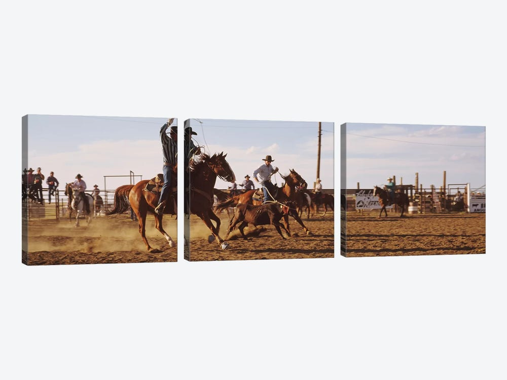 Cowboys Roping A Calf, North Dakota, USA by Panoramic Images 3-piece Canvas Artwork