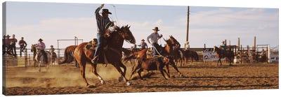 Cowboys Roping A Calf, North Dakota, USA Canvas Art Print