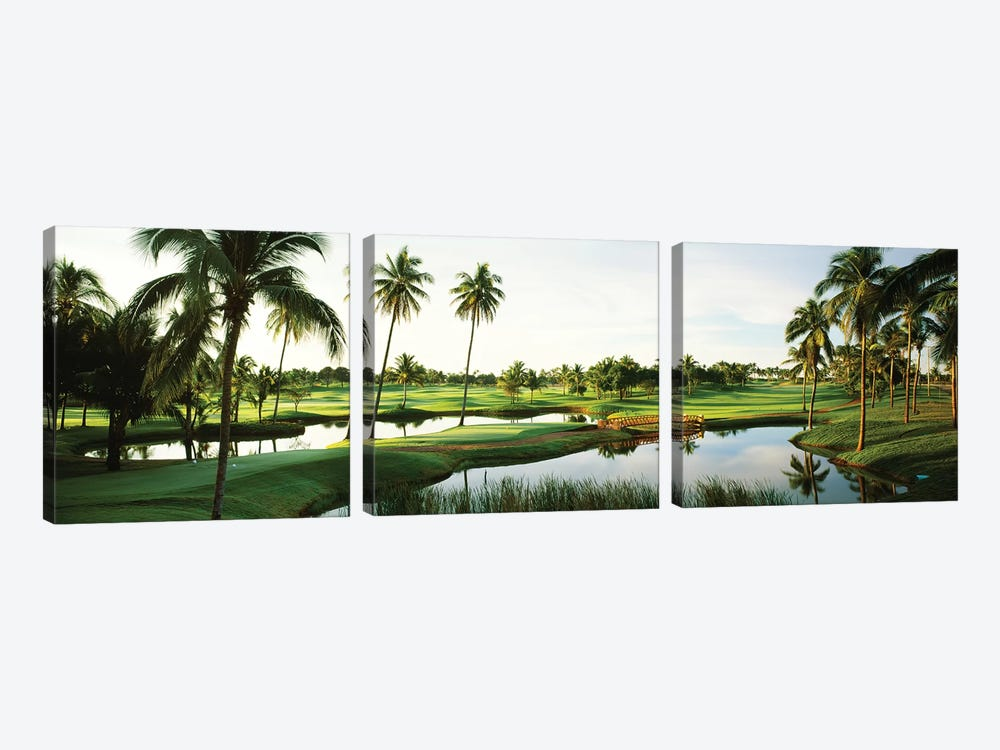 Golf course Palm Trees at Isla Navadad Resort in Manzanillo, Colima, Mexico by Panoramic Images 3-piece Canvas Artwork
