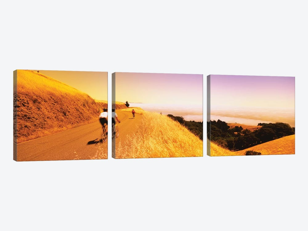 Cyclists on a road, Mt Tamalpais, Marin County, California, USA by Panoramic Images 3-piece Canvas Art