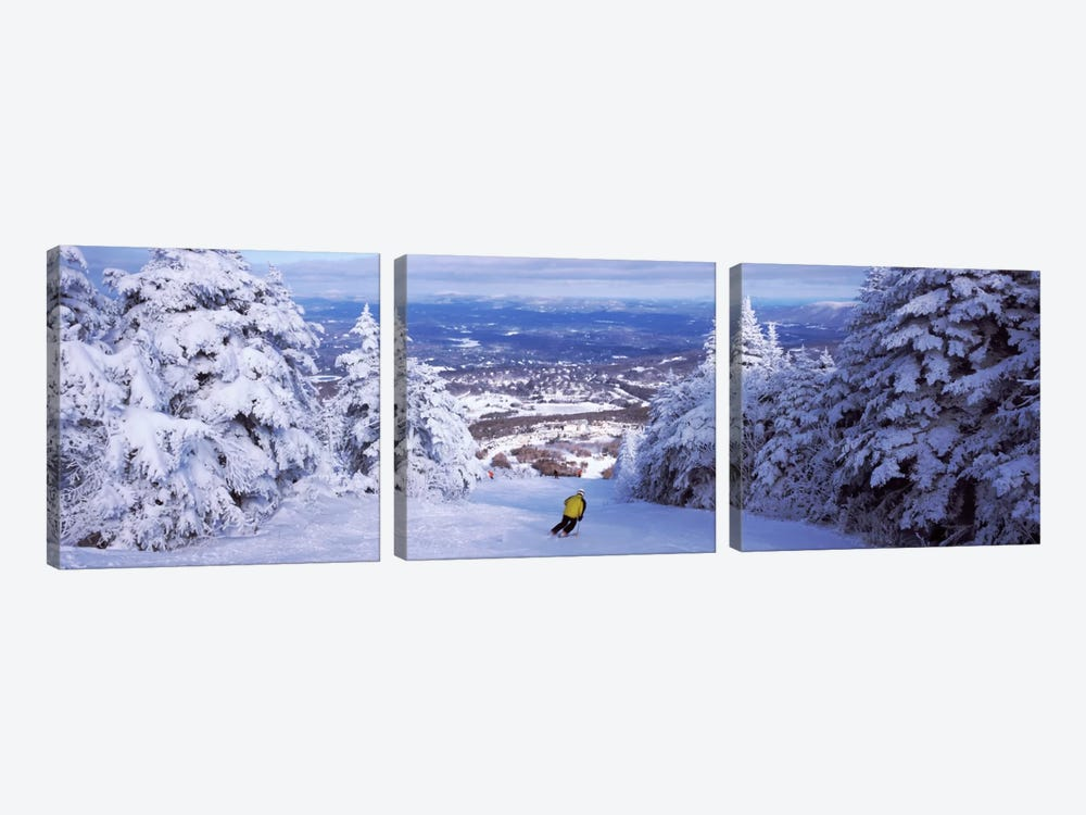 Lone Skier, Stratton Mountain Resort, Windham County, Vermont, USA by Panoramic Images 3-piece Art Print