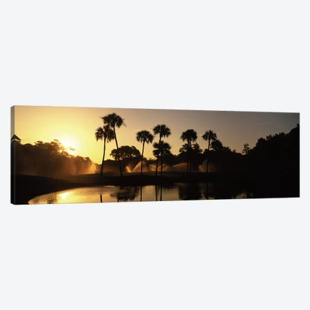 Palm Tree Silhouettes At Sunrise, Kiawah Island Golf Resort, Kiawah Island, Charleston County, South Carolina, USA 3-Piece Canvas #PIM12535} by Panoramic Images Canvas Art