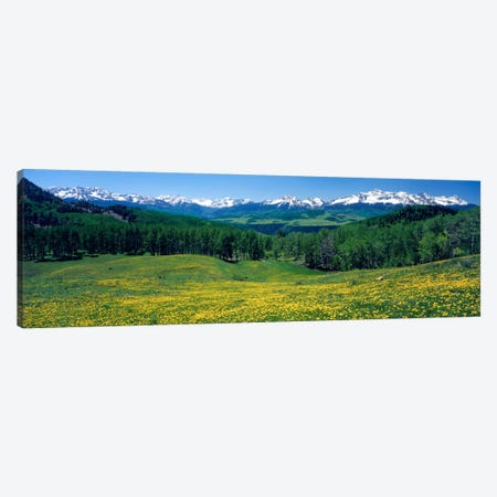 Mountain Landscape, San Miguel County, Colorado, USA Canvas Print #PIM125} by Panoramic Images Canvas Wall Art