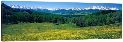 Mountain Landscape, San Miguel County, Colorado, USA Canvas Print #PIM125
