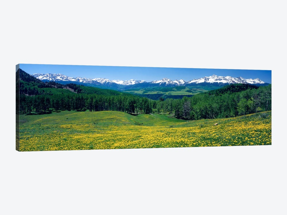 Mountain Landscape, San Miguel County, Colorado, USA by Panoramic Images 1-piece Canvas Artwork
