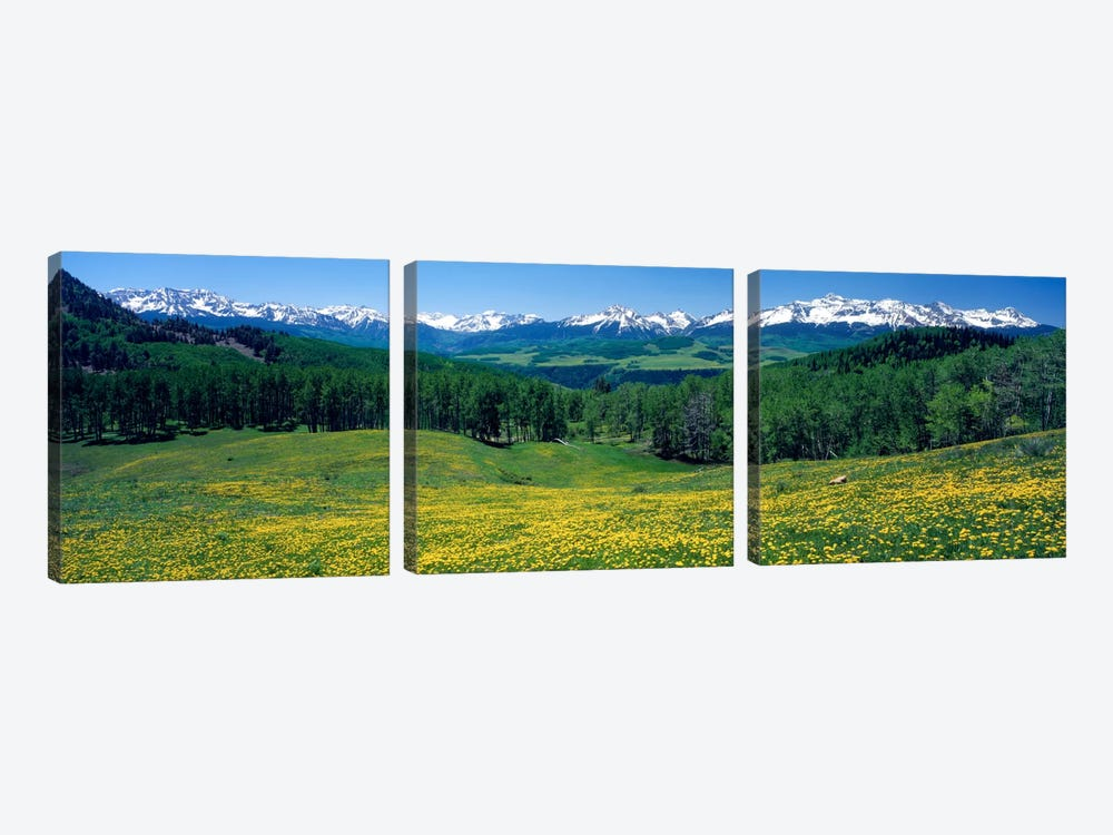 Mountain Landscape, San Miguel County, Colorado, USA by Panoramic Images 3-piece Canvas Artwork